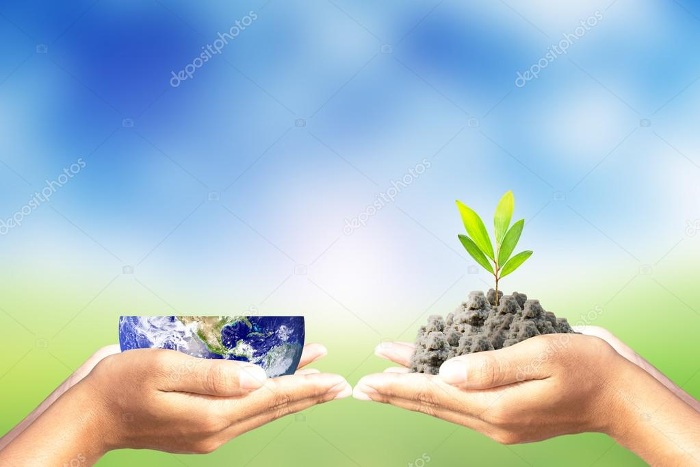 We love the world of ideas,Hand give world and tree on nature background.Elements of this image furnished by NASA.