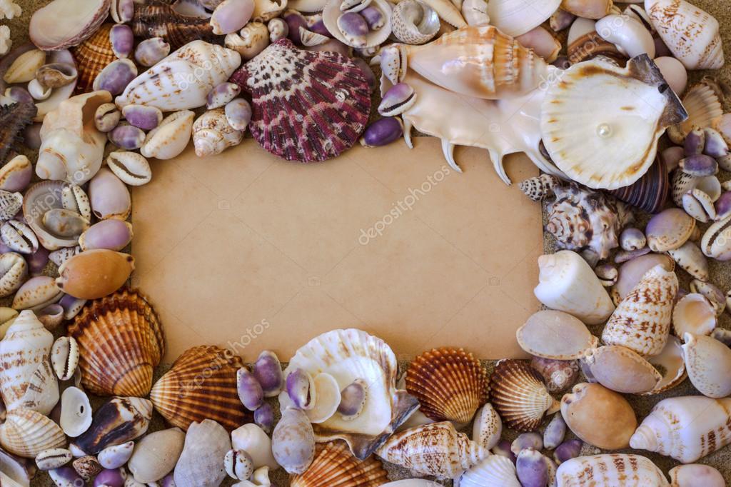 Conchas en la arena del mar. Marco de la — Foto de stock © youlia2 ...