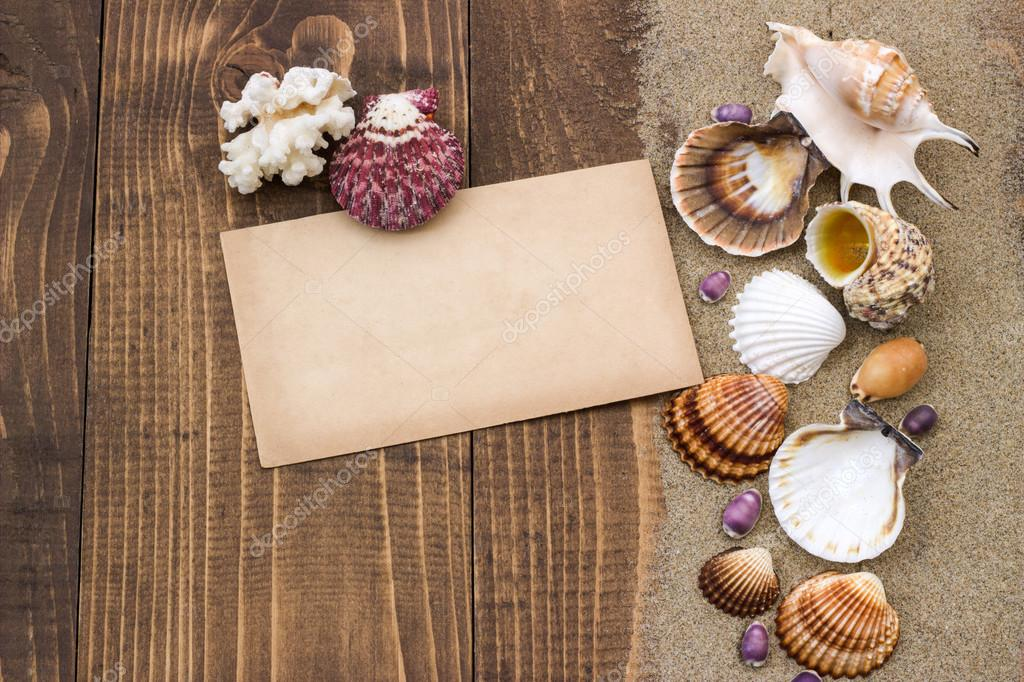 Shells on the wooden board.