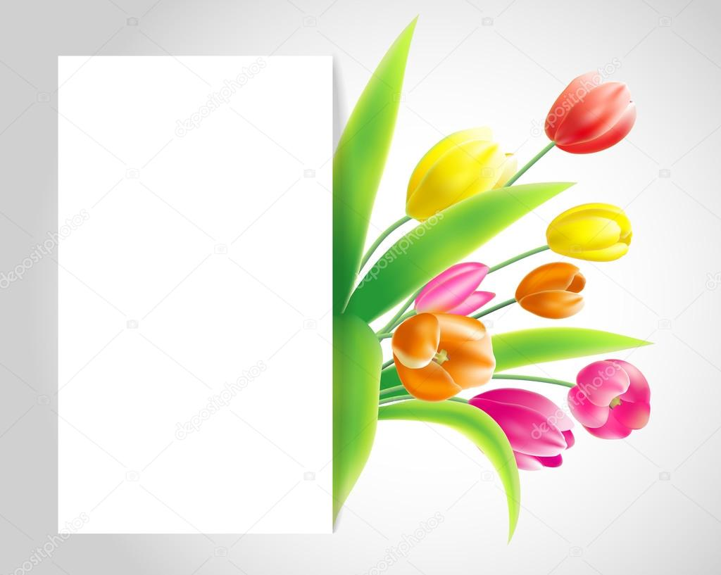 07ff38d6ba2e1 Vector illustration spring banner with bouquet of tulips in red, yellow,  pink colour on grey background with white paper sheet and shadow — Vector  by ...