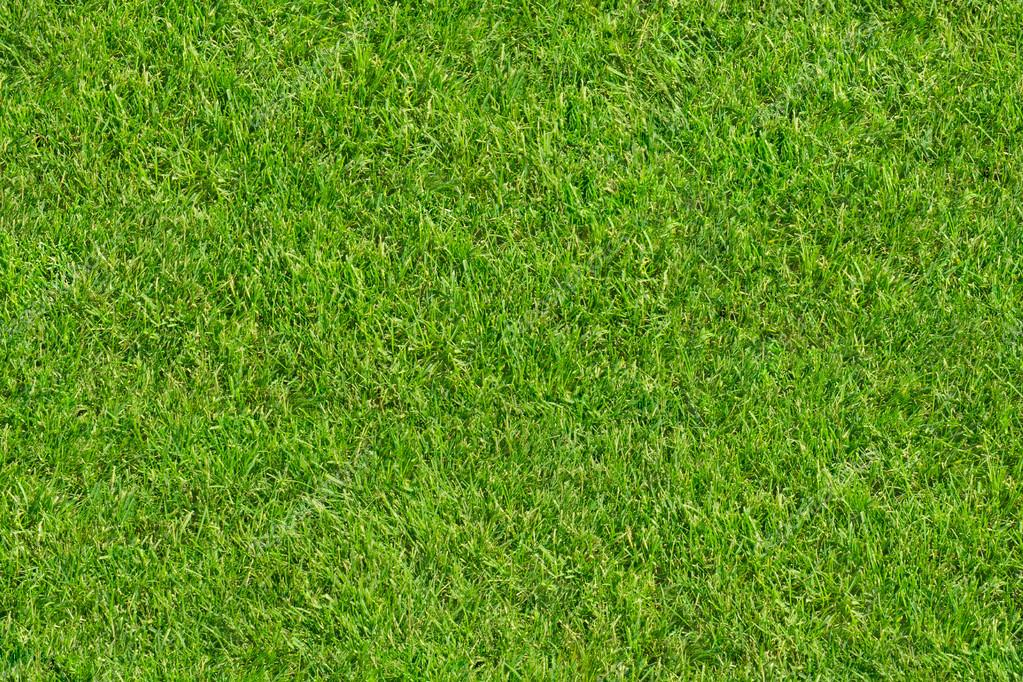 Top 28 Grass 4 Seamless Turf Lawn High Resolution