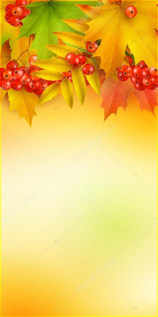 Autumn vertical banner, vector background with maple leaves and berries of mountain ash