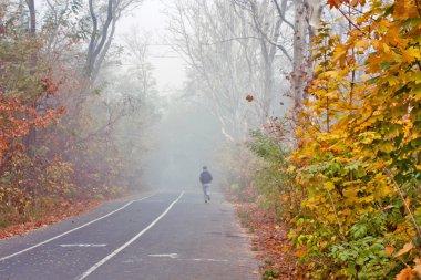 Autumn city park, jogging and bike path