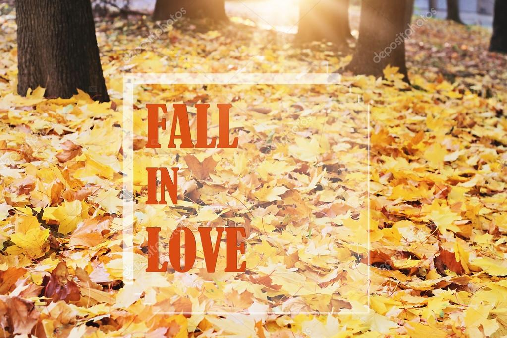 Inspirational Typographic Quote   Fall In Love. Autumn Wallpaper, Postcard  Background. U2014 Photo By Glisic_albina