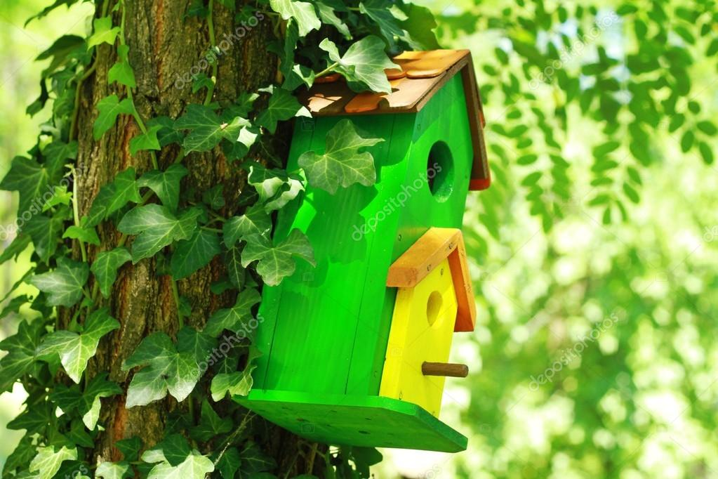 Cute little birdhouse on a tree. Home sweet home concept.