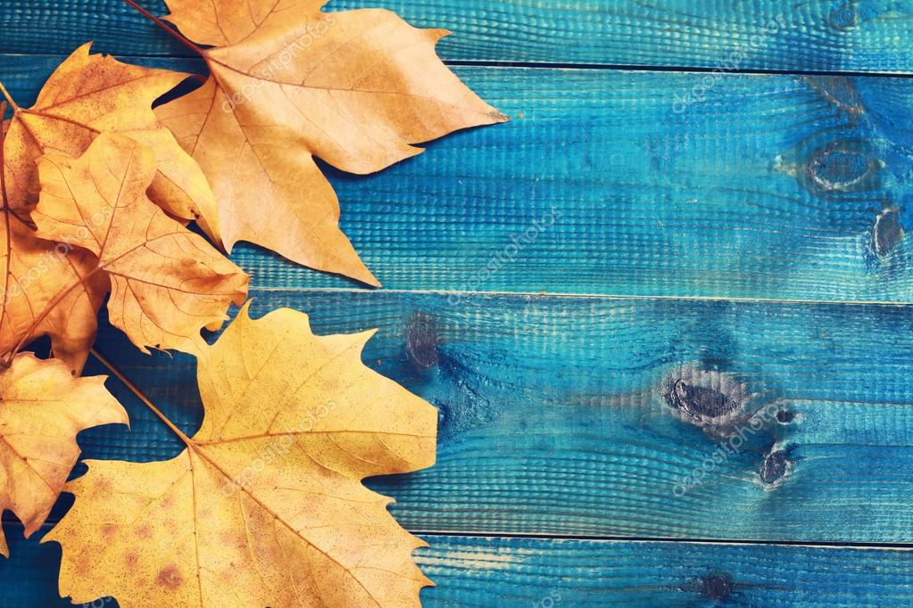 Yellow Autumn Leaves On Blue Rustic Background Season Wallpaper Stock Photo