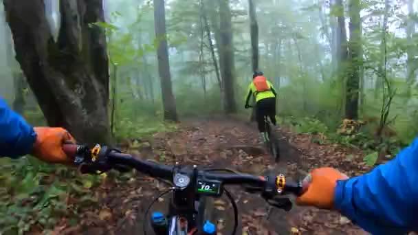 Bod hrudníku pohled z akční kamery řídítka řídítka mlha podzim deštivý les