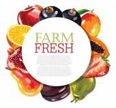 Handgezeichnete Früchte Frame