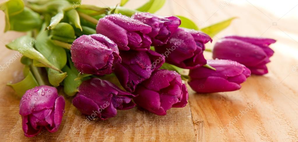 Purple tulips  on wood background.