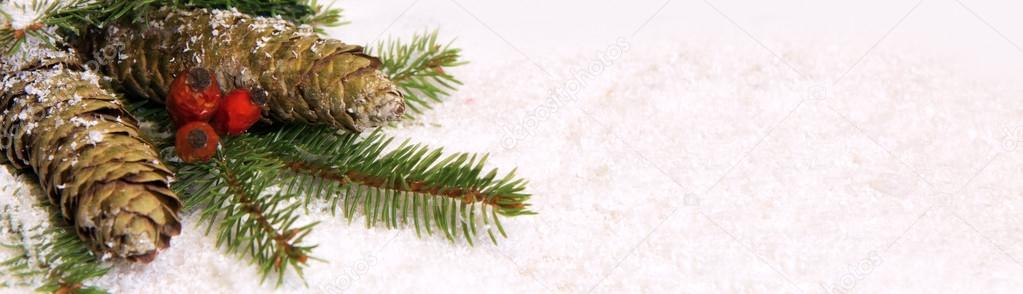 Christmas background  and Pine cones.