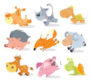 Running cute animals