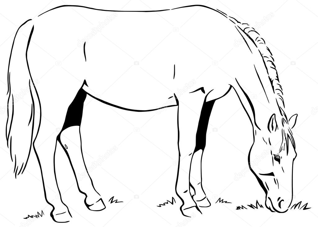 Draw Horse Eating Grass Sketch Coloring Page