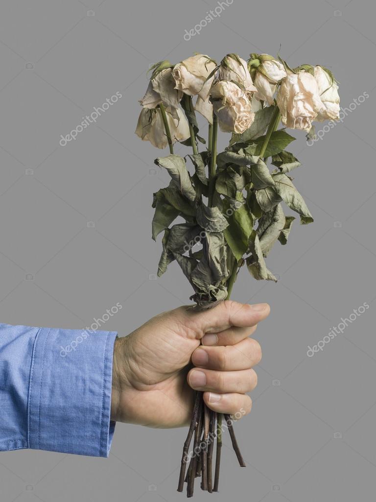 Men presenting dead roses — Stock Photo © joostverbeek #62084835