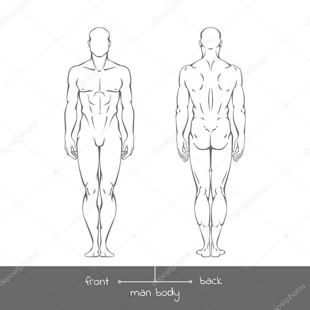 Hombre joven sano de la vista delantera y trasera — Vector de stock ...