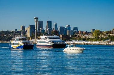 Modern cruise boats