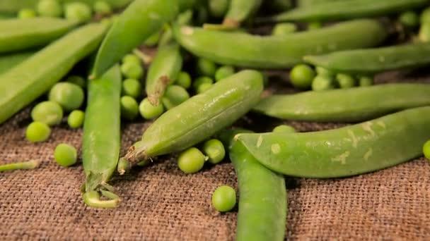 Hintergrund eines alten Säckchens mit grünen frischen Erbsen