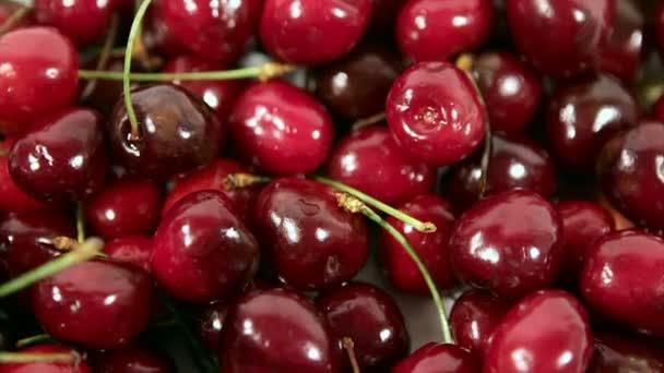 ripe, juicy, cherries. in motion.