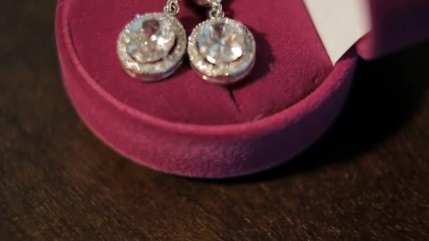 Luxus. Diamantové náušnice v poli. detail
