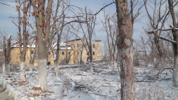 The war between Russia and Ukraine. Donbass. Trees damaged by shrapnel minutes after firing mortars. Settlement Semyonovka next to Slavonic