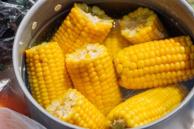 corn boil in the pot