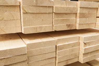 wood pine timber for construction buildings
