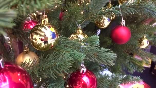 Zdobený vánoční stromek. Červené, stříbrné a zelené ozdoby na dřevě. Vánoční ozdoby Mnoho velkých zlatých a modrých, červené koule. Vánoční stromek. Novoroční interiér. Vánoční stromek, šťastné svátky