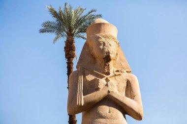 """Картина, постер, плакат, фотообои """"храм дендеры в египте. иероглифическая резьба на стене древнего египетского храма."""", артикул 452326076"""