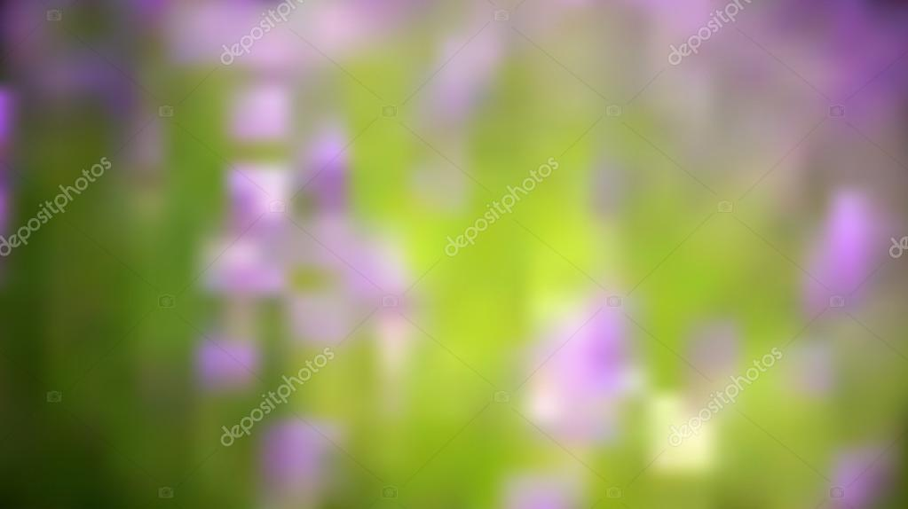 Lavender field background bokeh blur vector,