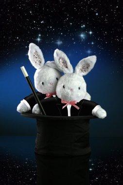 Couple of magic bunnies