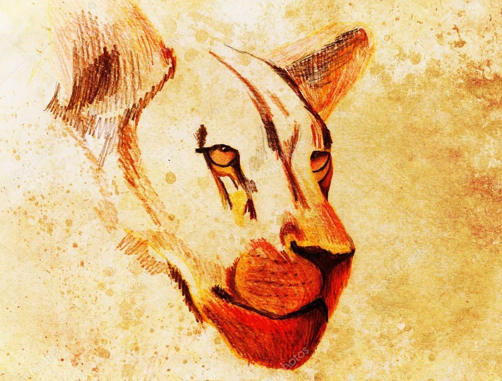 Dessin Lion Sur Papier Ancien Vintage Et Ancienne Structure Avec