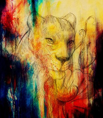 Lioness with flower, pencil drawing. Color effect and Computer collage.