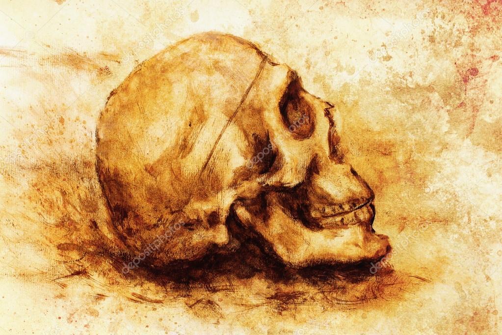 cráneo de pintura sobre papel y fondo sepia — Fotos de Stock ...