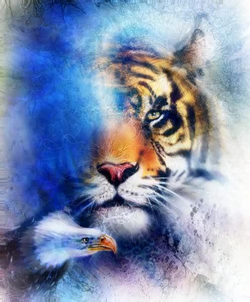 portrétní tygr s orlem. Barva Abstraktní pozadí a ozdoba, vinobraní a papírová struktura. Zvířecí koncept, oční kontakt. Modrá, oranžová, černá a bílá barva.