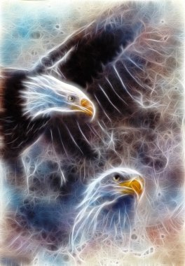 two eagles on an abstract background