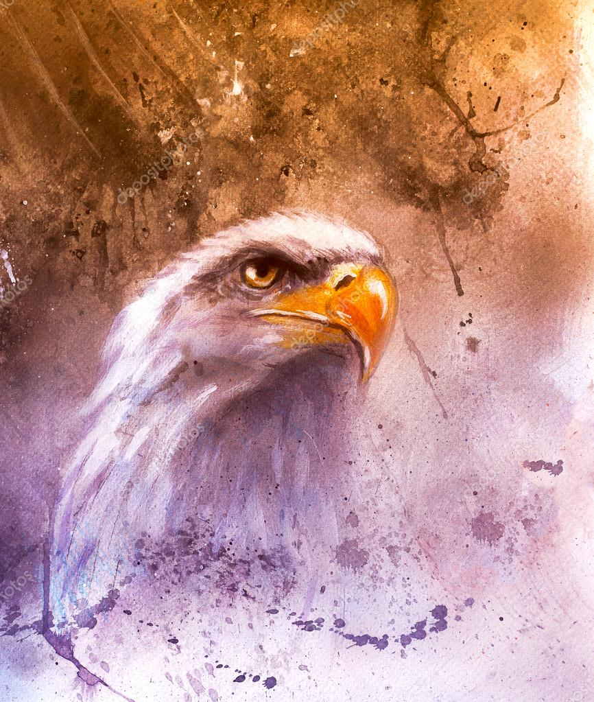 Symbol of American Freedom, wild bald eagle , one stretching his black wings to fly, on abstract background