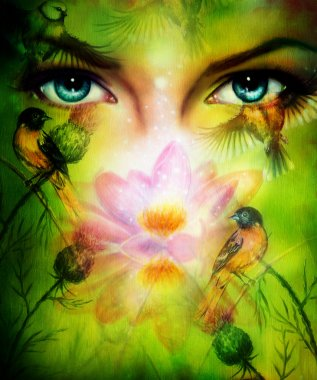 Beautiful illustration, blue goodness women eyes beaming up enchanting from behind a blooming rose lotus flower, with birds on multicolor background eye contact