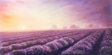 Original oil painting of lavender fields on canvas.Sunset landscape.Pink and purple morning light, color illustration.