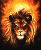 Lion blízko se portrét, Lví hlava se zlatou hřívou, krásné detailní olejomalba na plátně, fraktální efekt oční kontakt