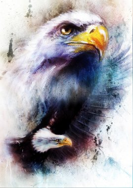 Painting of two eagles  one stretching his black wings to fly, on abstract color background