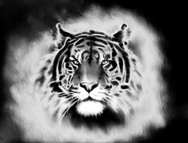 painting of a bright mighty tiger head on a soft toned abstract background eye contact. Black and white