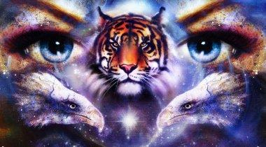 """Картина, постер, плакат, фотообои """"живопись орлов и тигра глазами женщины на абстрактном фоне в пространстве со звездами. озил полетит ."""", артикул 81032078"""