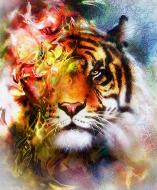 tiger collage on color abstract  background and mandala with ornamet , wildlife animals.