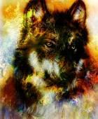 Fotografie Wolf, malování, barvy pozadí na papír, barevné ilustrace