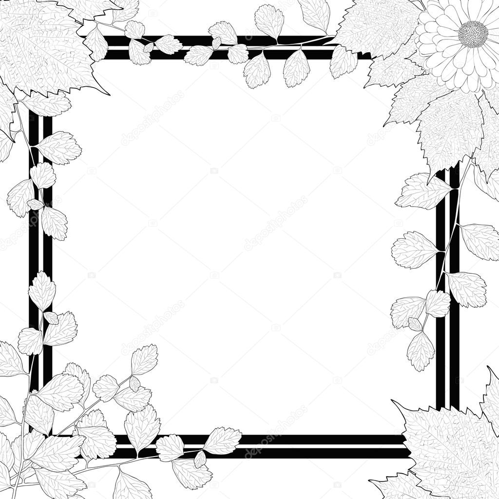 nature frame black and white branches leaves flower stock vector c poganka06 91782992 https depositphotos com 91782992 stock illustration nature frame black and white html