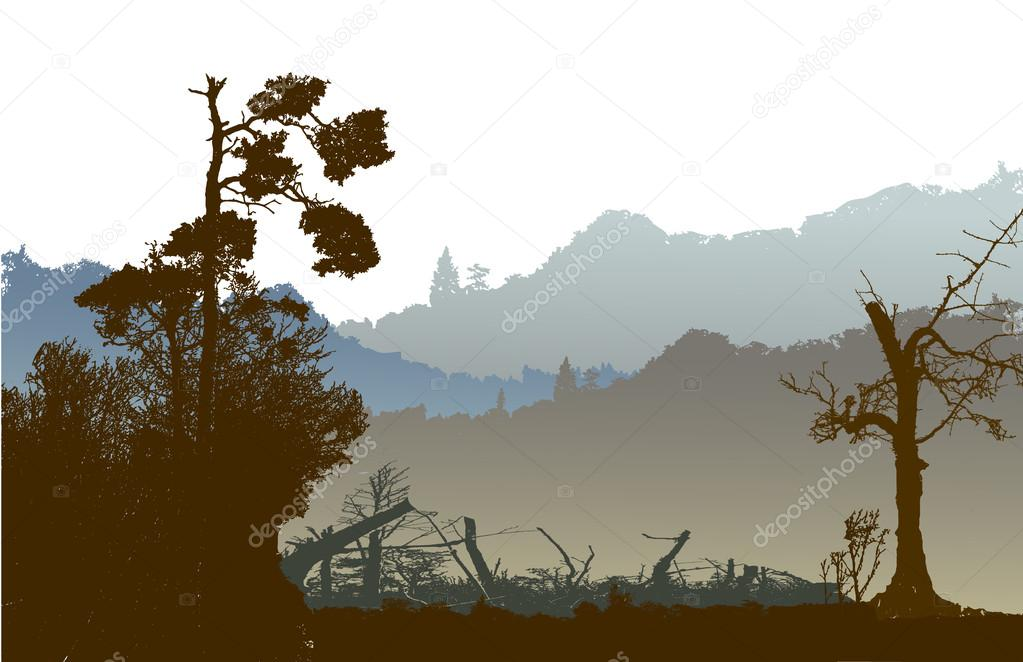 Panoramic nostalgic landscape with mountains, silhouettes of trees and plants