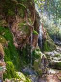 Sorgente del fiume Cuervo, Cuenca, Castilla la Mancha, Spagna