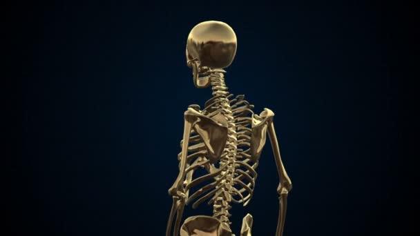 Metal Cyber Human Skeleton Gold Loopable. Alpha matte