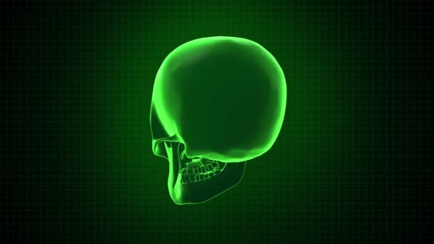 Hitech digital 3D Animation of Human skull green interface Loopable. Alpha matte