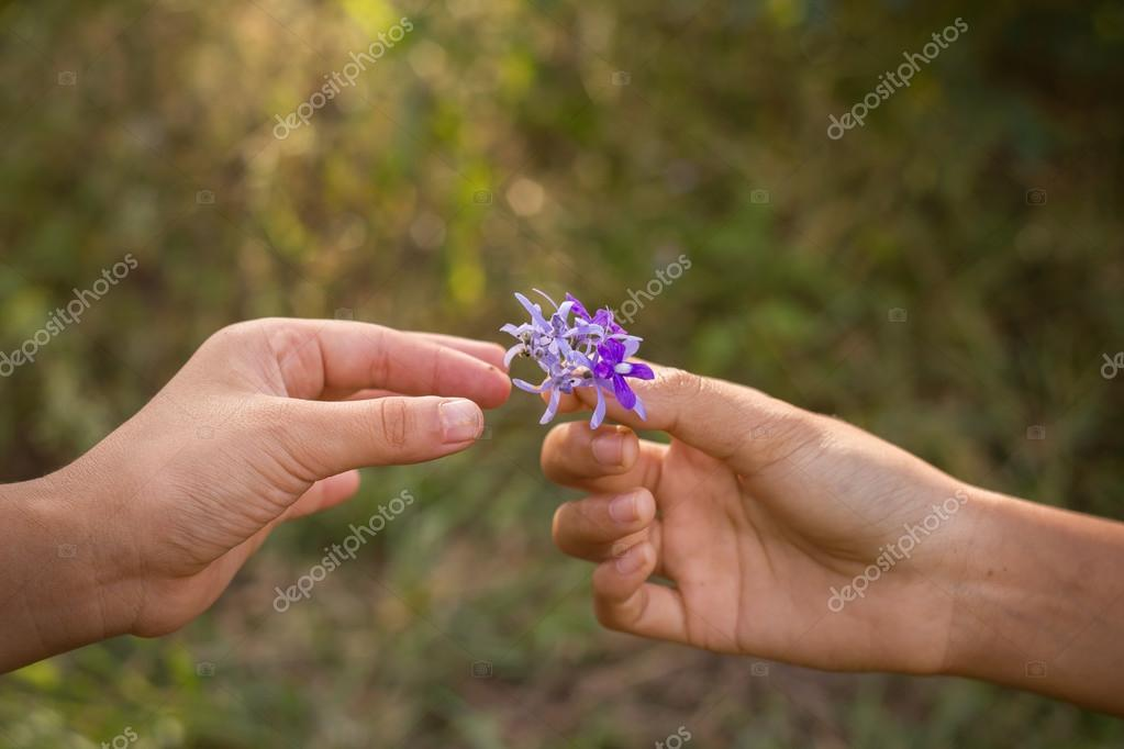 dirty hands giving a small purple flower to friend stock photo