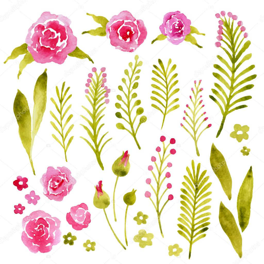 Watercolor vector set. Floral collection with leaves and flowers.Beautiful design for invitation and wedding cards